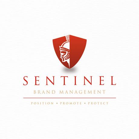 Forza SentinelBrandManagementbrandingdesignwork