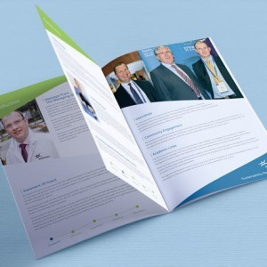 Cork design agency Forza! provided Eirechrom brochure design